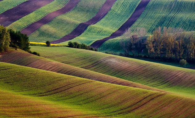 Bulgaars landschap