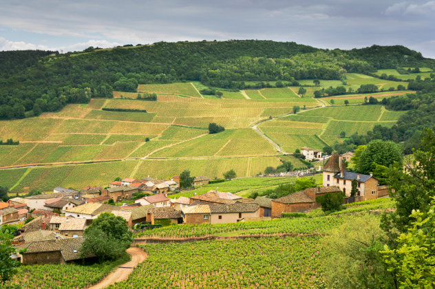 Summer scenery in the Loire valley in France