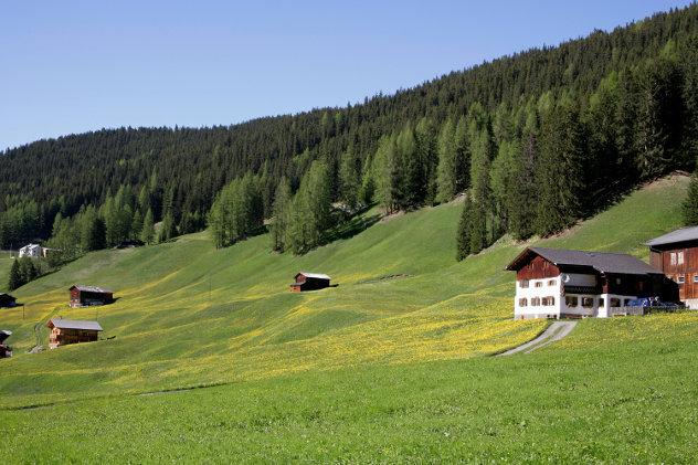 Rolling hills in Austria