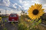 Volkswagen camper in the sun