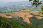 Panoramic hillside view in Marche Italy
